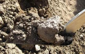 Anlægs muldjord